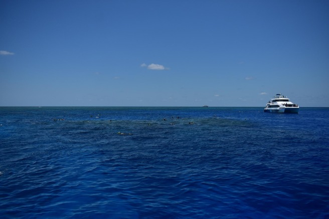 GREAT_BARRIER_REEF-3