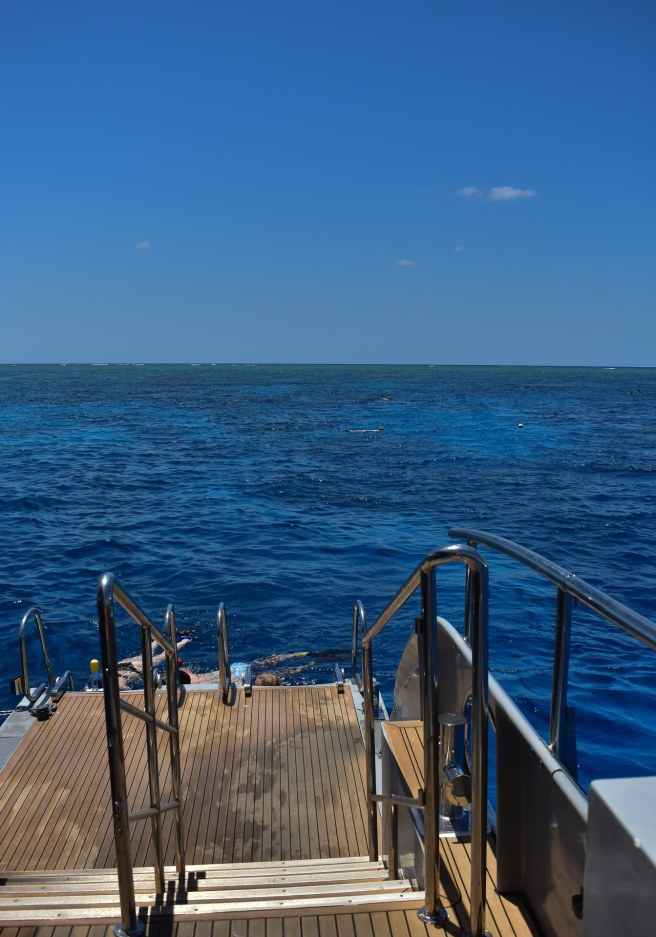 GREAT_BARRIER_REEF-4
