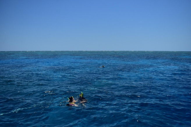 GREAT_BARRIER_REEF-6